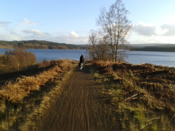 View of Kielder