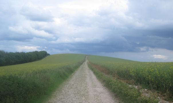 15_bignor-hill