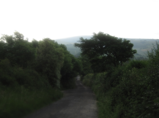 31_downhill-into-alfriston