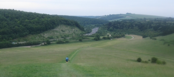 5__coming-down-to-qe-country-park